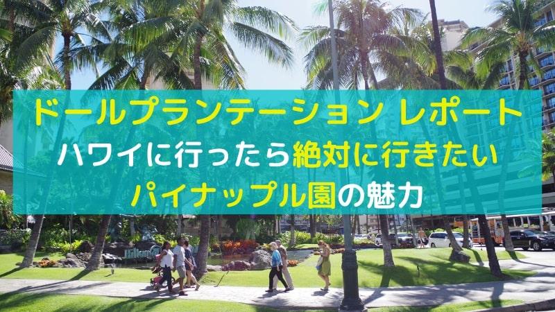 ドールプランテーション現地レポート|ハワイに行ったら絶対寄りたいおすすめスポットをご紹介